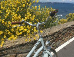 Ma vie dans le Golfe de St-Tropez. Vous n'aurez qu'une envie: nous rejoindre. Un week-end, une semaine ou toute la vie!!